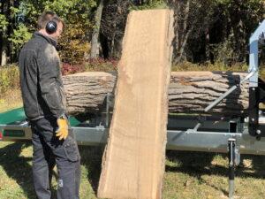 Mašine za drvo pilana